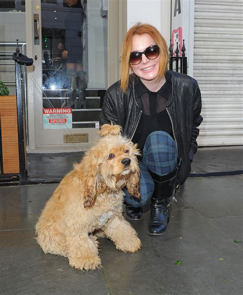 Lindsays Puppy by Dlisted Lindsay Lohan And Hervey Get Pered