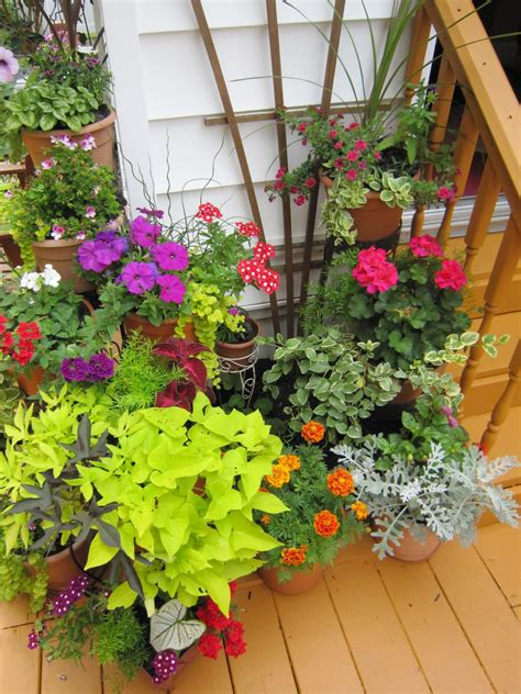 Hgtv Gardening Ideas Plantscaping A Deck Or Patio Hgtv