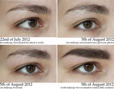 how long before brows grow back with coconut oil how to regrow eyebrows and eyelashes