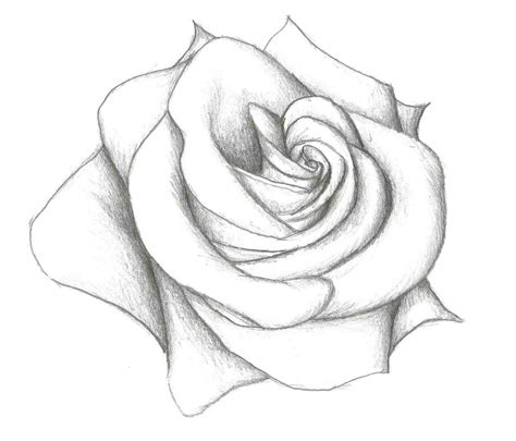 simple pencil drawing hd download the images collection of drawing free download clip on