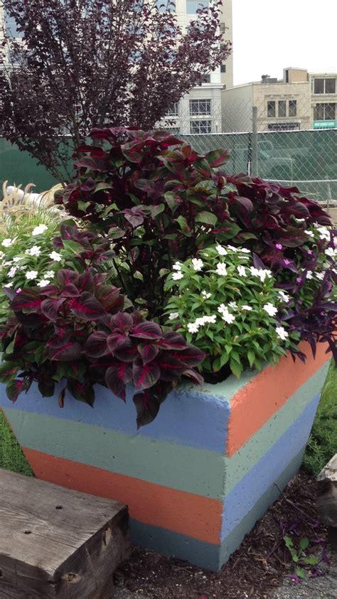 cool planters pinterest garden planters ideas photograph cool planter