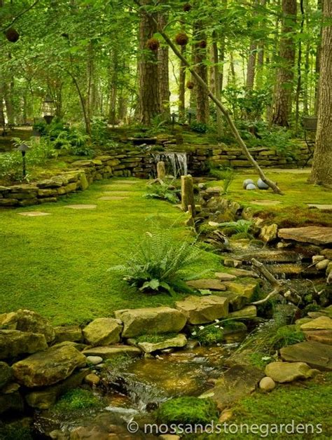 how to get rid of moss on patio stones 25 best ideas about moss on moss lawn ground cover shade and ground covering