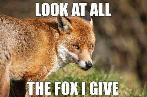 Animal Pun Memes - 17 animal memes that will make every pun lover s day