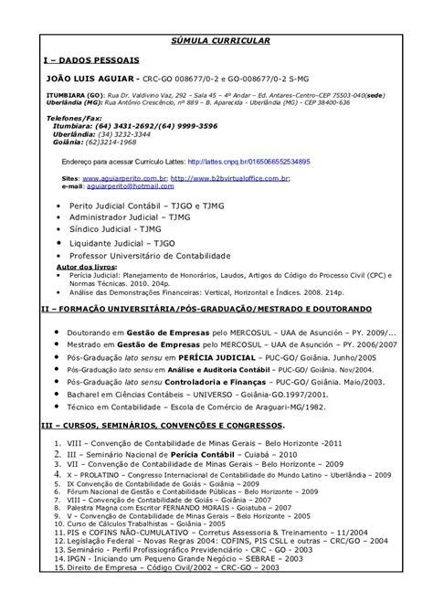 Modelo Curriculum Vitae Poder Judicial S 250 Mula Curricular