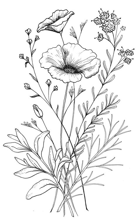 wild flower tattoo designs 25 best ideas about flower sketches on flower