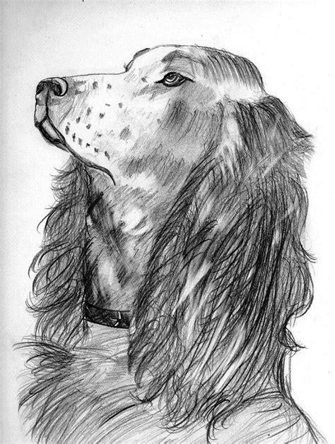 imagenes hechas a lapiz de animales buenos dibujos a lapiz de duendes imagui