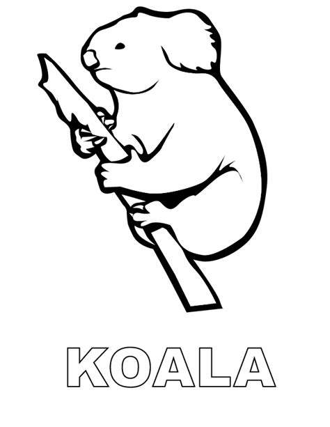 printable images of koalas koala printable coloring in pages for kids number 1808