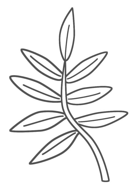 coloring page of a tree branch tree branches coloring pages clipart best