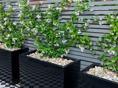 imagenes jardines pequeños modernos ideas para decorar jardines peque 241 os y modernos