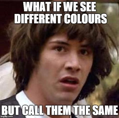 What Are We Meme - what if we see different colours but call them the same