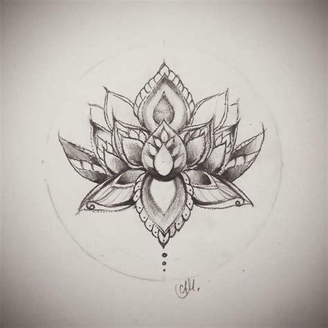 lotus flower drawings on squirrel