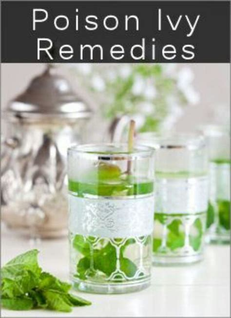 Home Remedies For Poison Oak by Poison Remedies Healthcare