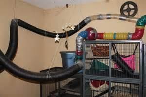 Custom Rabbit Hutch Ferret Cage Pictures