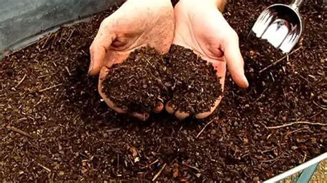 cara membuat kolase dari jerami cara membuat pupuk kompos dari sah organik untuk