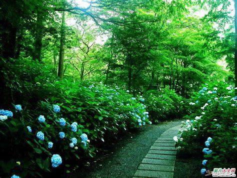 Amo Gardens by