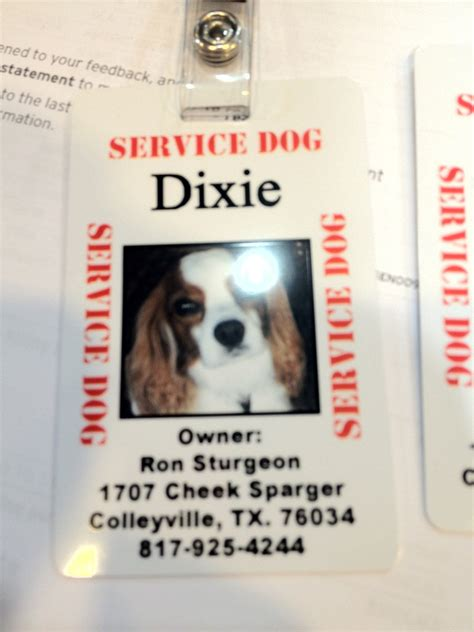 can service dogs in go anywhere service patches spoiled cavaliers