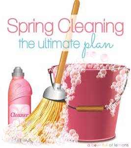 what is spring cleaning the ultimate spring cleaning plan a bowl full of lemons