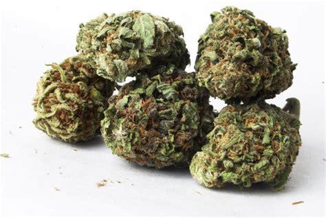 test marijuana marijuana test national screening
