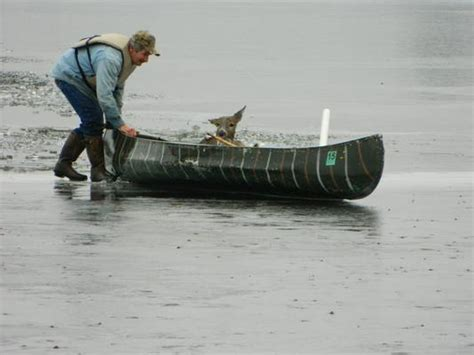 canoes he was ice he minnesota man rescues deer from frozen lake