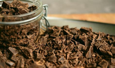 chocolate for dogs safe chocolate carob chocolate for dogs