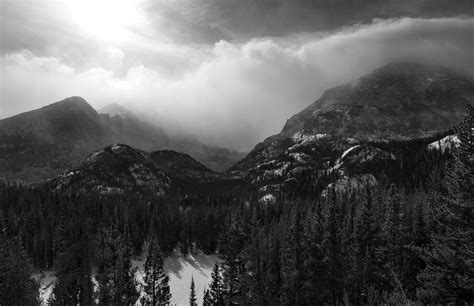 black and white mountain wallpaper black and white mountain forest hd wallpaper