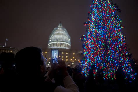 capitol hill christmas tree lighting ceremony attended by