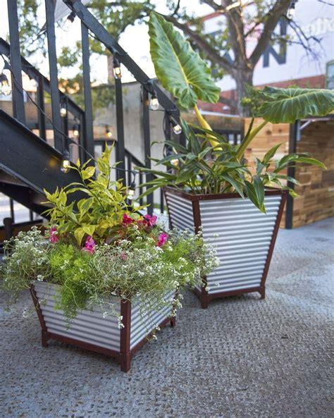 Galvanized Garden Planters by 25 Best Ideas About Metal Planters On Flower