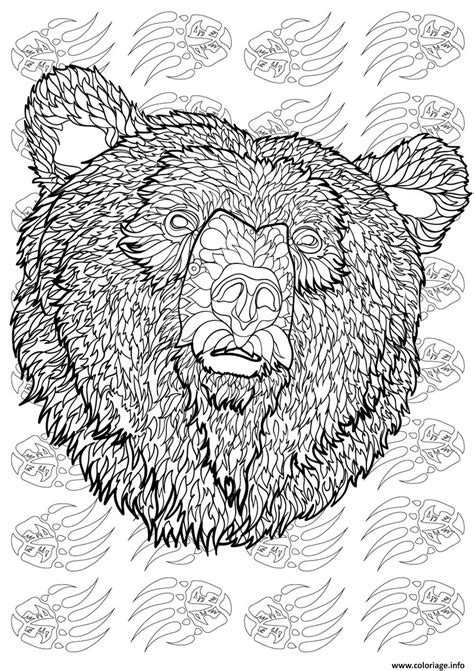 Coloriage ours adulte animaux antistress difficile