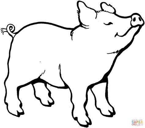 pig coloring page pig smells something coloring page free printable