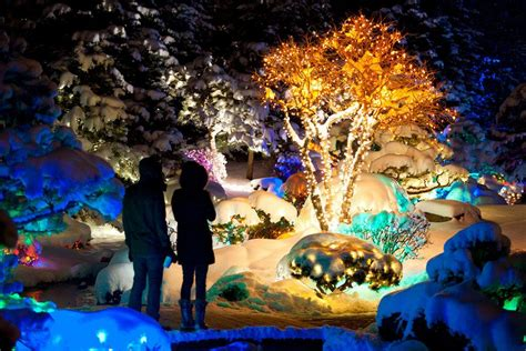 chatfield botanic gardens christmas lights blossoms of light denver botanic gardens denver attractions review 10best experts and tourist