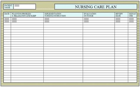 care plans for patients in hospitals and nursing homes