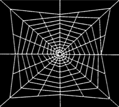 spider web pattern photoshop creating the spider web in photoshop part 1 of 5 adobe