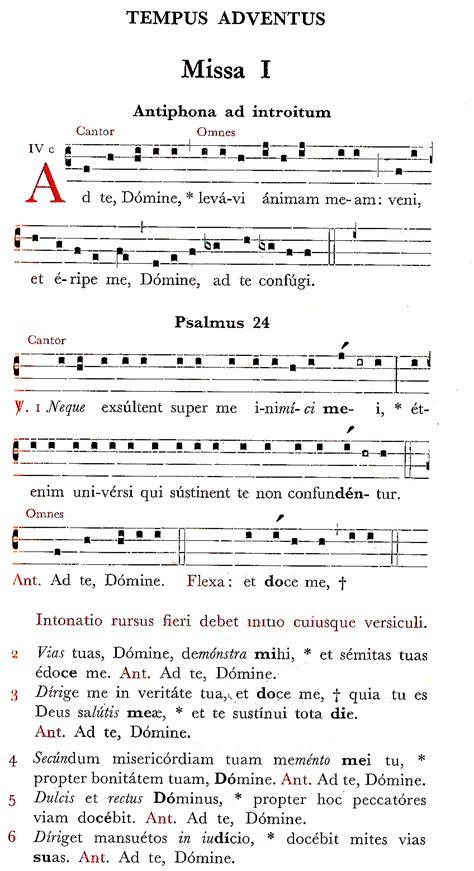 amapola testo italiano ad te domine levavi canto semplice per la prima