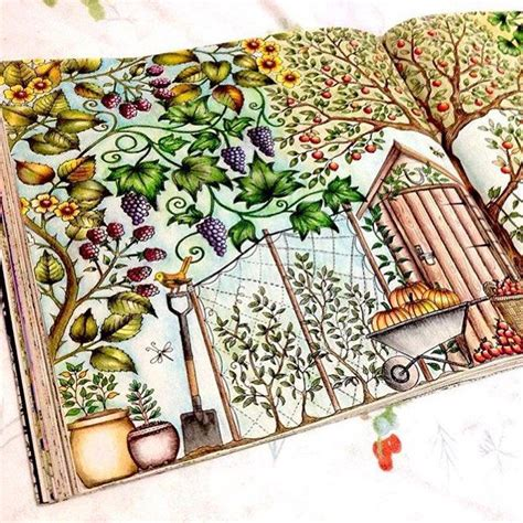 secret garden colouring book pens or pencils 1000 images about johanna basford on johanna