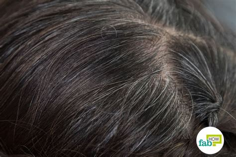 how to color gray hair evenly search results how to get rid of gray hair fab how