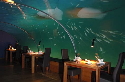 ithaa undersea restaurant underwater restaurants undersea dining world first
