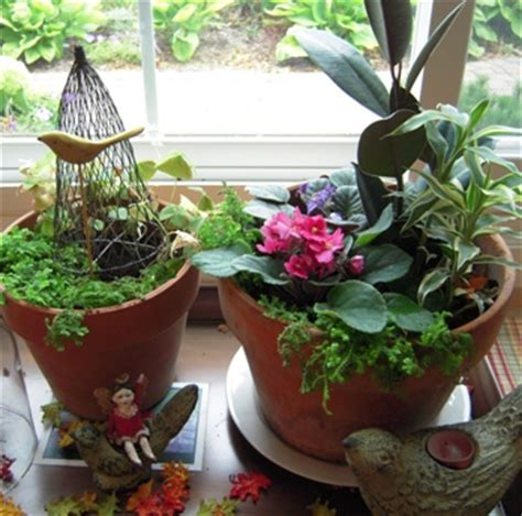 Indoor Container Gardening Ideas Indoor Container Gardens Gallery