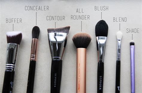 Makeup Tools essential makeup tools makeup vidalondon
