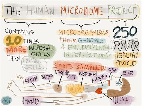 the human in health and illness e book books quot human microbiome project quot through an infographic