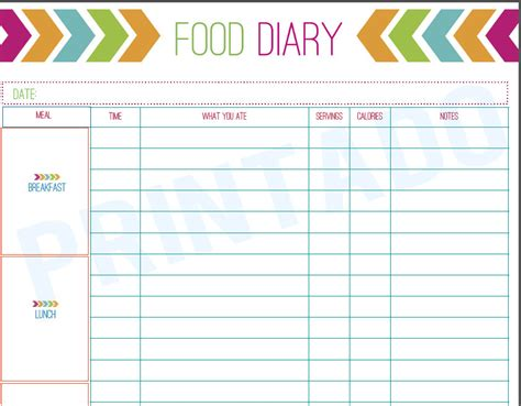 printable food diary form printable diet diary images frompo