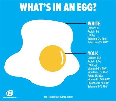 protein in eggs don t throw away that egg yolk