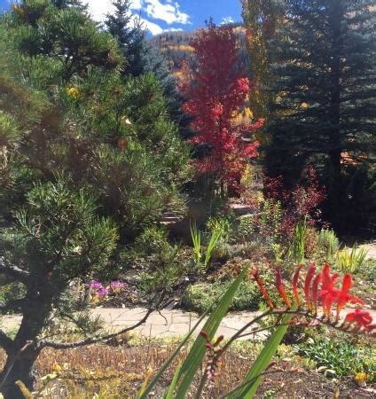 Betty Ford Alpine Gardens by Pretty Walk Picture Of Betty Ford Alpine Gardens