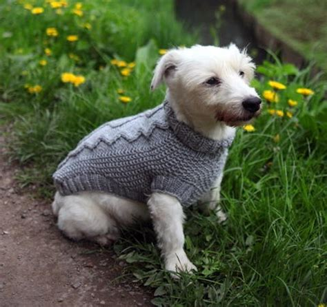 wool pattern for dog coat cable knit dog sweater pattern free knitting pinterest