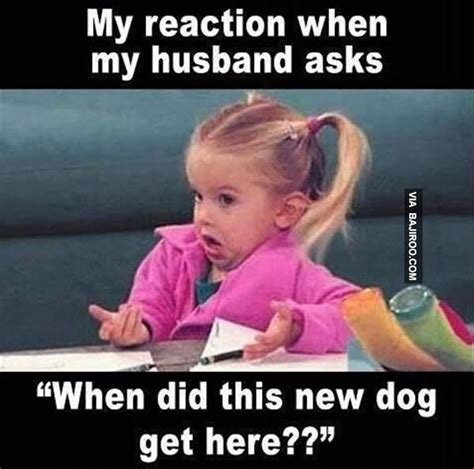 Funny Husband Memes - 100 most hilarious love meme gallery golfian com