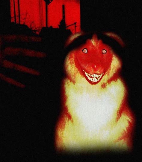 imagenes de smiledog jpg 9 best smile dog jpg images on pinterest creepy stuff
