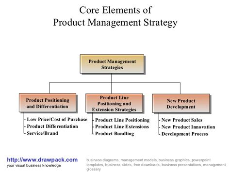 Best Mba Schools For Product Management by Product Management Strategy Business Diagram