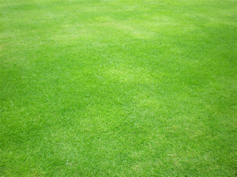 Green Grass by Green Grass By Gardek On Deviantart