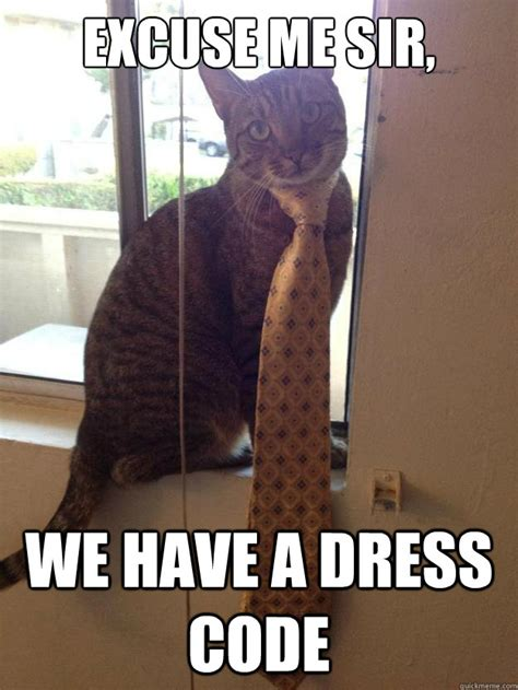 Meme Dress - excuse me sir we have a dress code good looking cat
