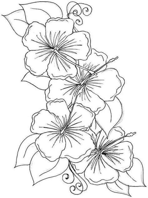 Coloring Page Flowers by Hibiscus Flower Coloring Page Coloring Home