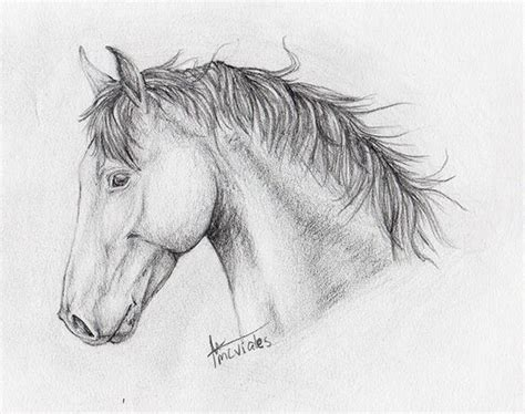 imagenes para dibujar a lapiz pdf dibujos de caballos para dibujar a lapiz buscar con